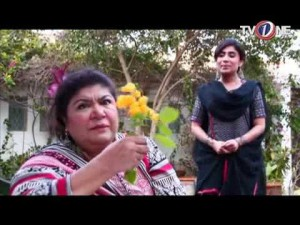 Bhatti Aur DD – EP # 44 – 24th July 2016