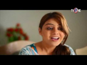Mohabbat Humsafar Meri – EP # 14 – 10th November 2016