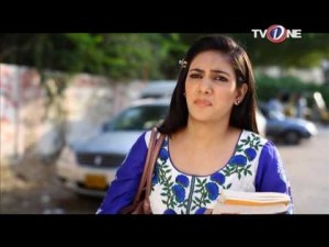 Mohabbat Humsafar Meri – EP # 28 – 30th November 2016
